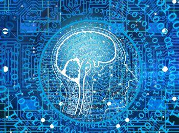Bild Künstliche Intelligenz Hirn und Schaltkreise (Pixabay)