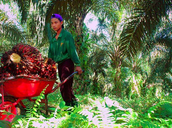 Foto ILO Asia Pacific/flickr